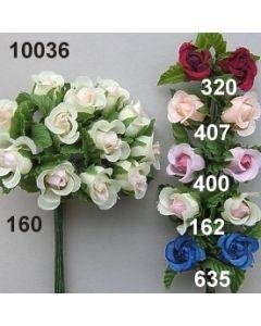 Kussröschen mit Blätter / 10036