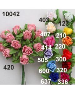 Farm-Rose / 10042