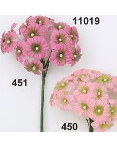 Buddleja x3 / rosa-grün / 11019.451
