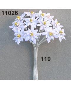 Edelweiß mini / weiß / 11026.110