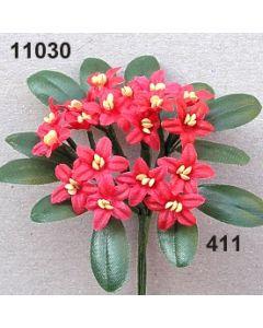Almrausch x3 mit 2 Blättern / azalee / 11030.411