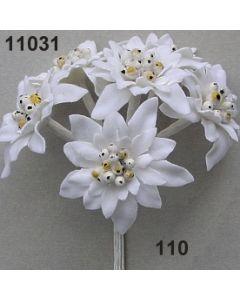 Edelweiß XL / weiß / 11031.110
