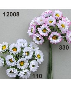 Gänseblümchen / 12008