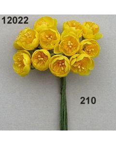 Dotterblume / goldgelb / 12022.210