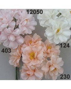 Azalee  / 12050