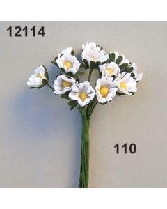 Gänseblümchen mini aus Baumwolle  / weiß / 12114.110