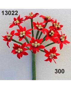 Weihnachtsstern mini / rot / 13022.300