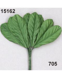 Gänseblümchen Laub / hellgrün / 15162.705