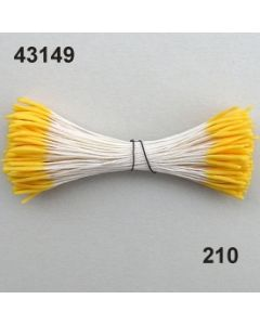 Staubgefäße lang/glatt / goldgelb / 43149.210