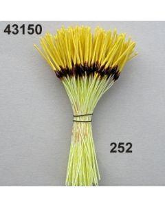 Staubgefäße spitz-lang / gelb-braun / 43150.252
