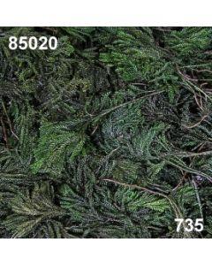 Erikamoos / dunkelgrün / 85020.735